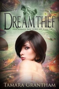 Dreamtheif