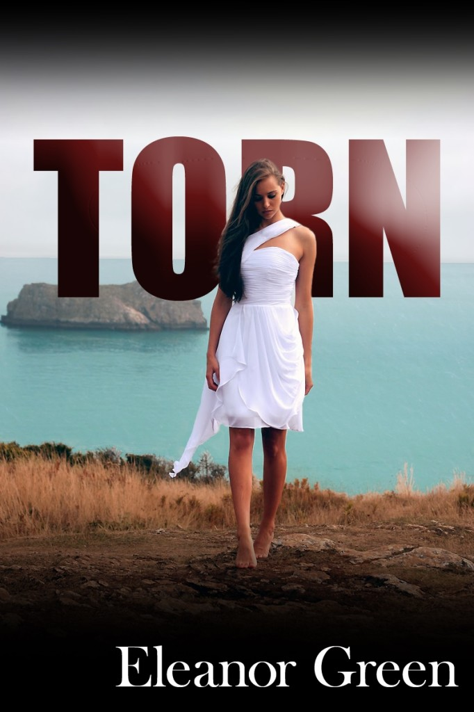 TORN cover2